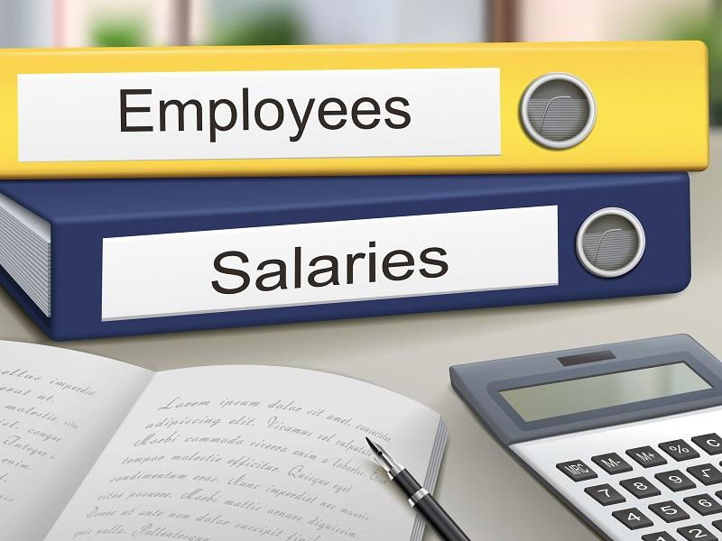 employees and salaries binders